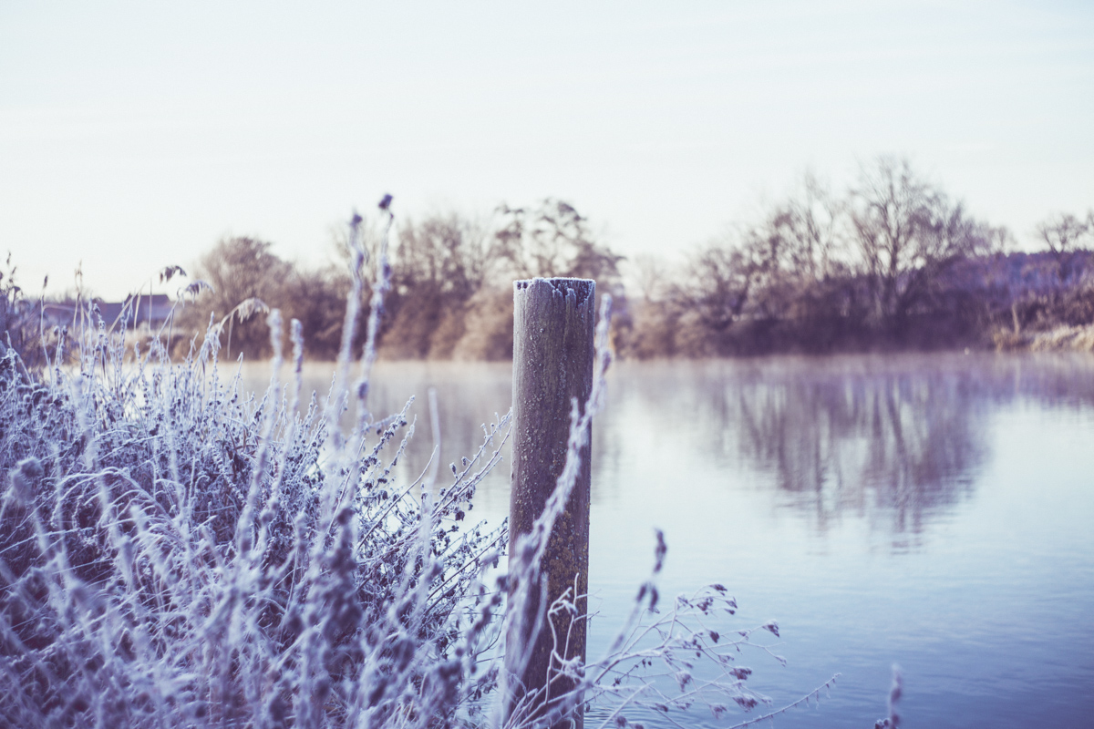 frosty lakeside ice crystal